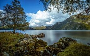 Пейзажи: Austrumdalsvatnet, Bjerkreim, Rogaland, Norway, Бьеркрейм, Ругаланн, Норвегия, озеро, горы, дерево, камни