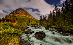 Пейзажи: Norway, Норвегия, река, холм, хижина, деревья