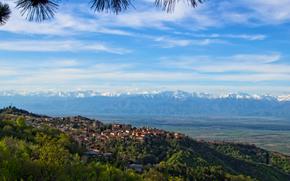 Город: Cигнахи, Грузия, горы, небо, деревья, город, пейзаж