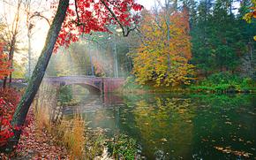 Пейзажи: осень, река, мост, деревья, пейзаж