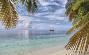 Пейзажи: море, берег, пальмы, корабль, пейзаж