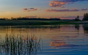 Пейзажи: Река, речка, вода, лес, деревья, трава, небо, облака, сумерки, природа, пейзаж