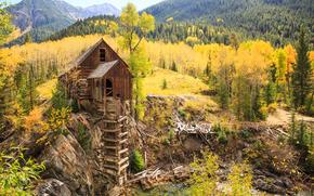 Пейзажи: Crystal Mill, Colorado, осень, деревья, пейзаж