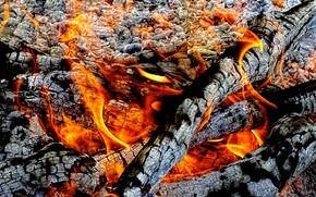 Разное: огонь, угли, костёр, пепел, зола, пламя