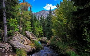 Пейзажи: Rocky Mountain National Park, река, горы, лес, скалы, деревья, осень, пейзаж