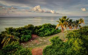Пейзажи: Bahia Honda State Park, Florida, море, берег, пальмы, пляж, пейзаж