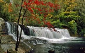 Природа: осень, лес, деревья, водопад, скалы, природа