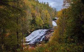 Природа: осень, лес, деревья, водопады, скалы, природа