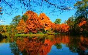 Пейзажи: озеро, осень, деревья, пейзаж