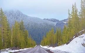 Пейзажи: дорога, лес, деревья, горы, пейзаж