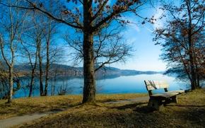 Пейзажи: осень, река, парк, деревья, тропинка, лавочка, пейзаж