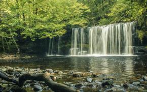 Природа: лес, деревья, водопад, скалы, природа