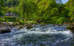 Пейзажи: Watersmeet, East Lyn River, Exmoor, Devon, England, Уотерсмит, Эксмур, Девон, Англия, река, лес, деревья, дом