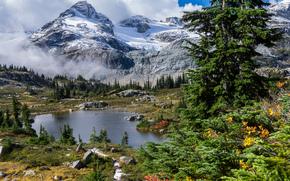 Пейзажи: горы, деревья, водоём, пейзаж