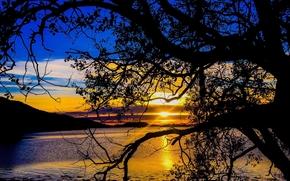 Пейзажи: озеро, закат, деревья, пейзаж