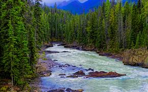 Пейзажи: Horse River, Canadian Rockies, река, скалы, деревья, горы, пейзаж