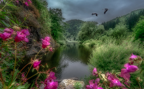 �������: river Kamp, Austria, ����, ����, �������, �������, ������