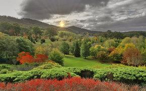 �������: Lofty Botanic Gardens, ��������-�����, ����� ���������
