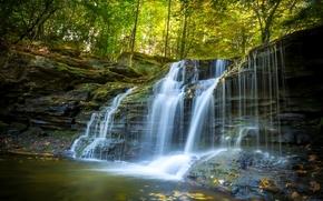 �������: Ricketts Glen State Park, Pennsylvania, ������������, �������, ������, ���, �����