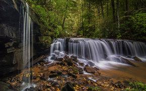 Пейзажи: Pearson's Falls, Saluda, North Carolina, Водопад Пирсона, Салуда, Северная Каролина, водопад, каскад, лес, камни