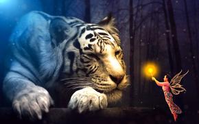 Рендеринг: тигр, девушка, фея, сюрреализм, фантасмагория, 3d, art