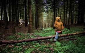Рендеринг: медведь, волк, мальчик, лес, деревья, споси меня миша, меня волк съесть хочет