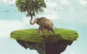 Рендеринг: остров, слон, дерево, сюрреализм, фантасмагория, 3d, art