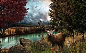 Пейзажи: река, деревья, осенькамни, олень, пейзаж