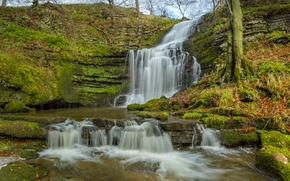 Пейзажи: Scaleber Force, Yorkshire Dales, North Yorkshire, England, Йоркшир-Дейлс, Северный Йоркшир, Англия, водопад, каскад, осень