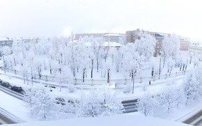 Город: Winter Is Coming, зима, деревья, изморось, панорама