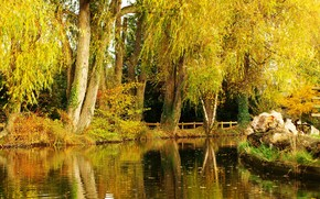 Пейзажи: парк, пруд, осень, деревья, пейзаж