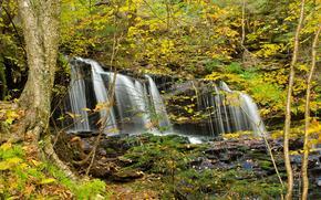 Природа: осень, водопад, лес, деревья, природа