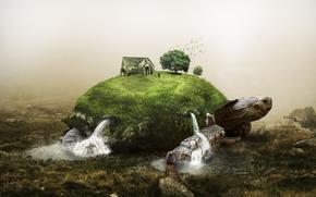 Рендеринг: черепаха, сюрреализм, фантасмагория, 3d, art