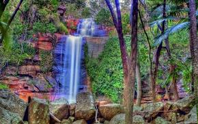 Пейзажи: водопад, скалы, камни, деревья, пейзаж