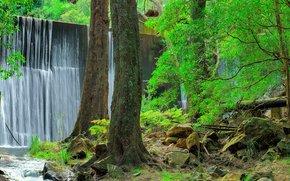 Пейзажи: Дженолан заповедник в Голубых горах, NSW, Австралия, водопад