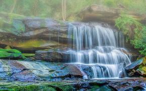 Природа: водопад, Центральное побережье штата Новый Южный Уэльс, Австралия