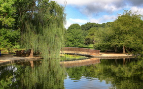 Пейзажи: пруд, парк, мост, деревья, пейзаж