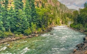 Пейзажи: река, горы, деревья, пейзаж