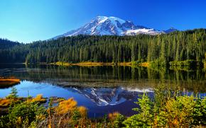 Пейзажи: Mount Rainier National Park, Reflection Lake, озеро, горы, деревья, пейзаж