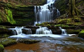 Природа: Scaleber Force, Yorkshire Dales, North Yorkshire, England, Йоркшир-Дейлс, Северный Йоркшир, Англия, водопад, каскад