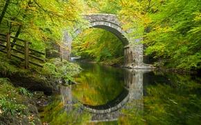 Пейзажи: Holne Bridge, River Dart, Dartmoor, Devon, England, Холн-Бридж, река Дарт, Дартмур, Девон, Англия, мост, арка, река, отражение, лес, деревья, осень