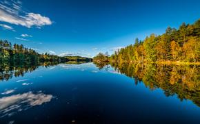 Пейзажи: S?tre, Hurum, Buskerud, Norway, Хурум, Бускеруд, Норвегия, осень, озеро, лес, отражение