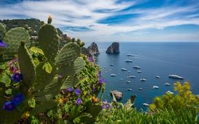 Пейзажи: Gardens of Augustus, Capri, Tyrrhenian Sea, Italy, Сады Августа, Капри, Тирренское море, Италия, море, побережье, скалы, яхты, кактус, цветы, панорама
