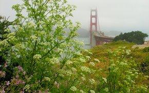 Пейзажи: Мост Золотые ворота, Форт-Скотт, штат Калифорния