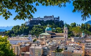 Город: Hohensalzburg Castle, Festungsberg, Salzburg Cathedral, Salzburg, Austria, крепость Хоэнзальцбург, гора Фестунгберг, Зальцбургский собор, Зальцбург, Австрия, здания, крепость, собор, ветки, панорама