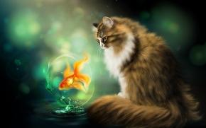 Рендеринг: кошка, рыбка, art