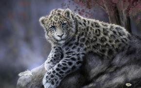 Рендеринг: Дальневосточный, леопард, art
