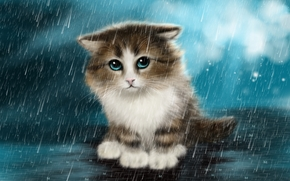 Рендеринг: котёнок, под дождём, art