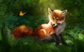 Рендеринг: лиса, бабочка, art