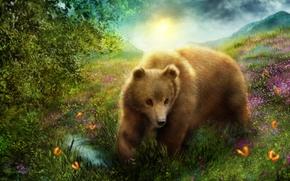 Рендеринг: медведь, бабочки, природа